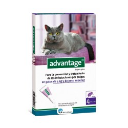 Comprar Advantage Gato 80Mg Gato +4Kg 4 Pipetas