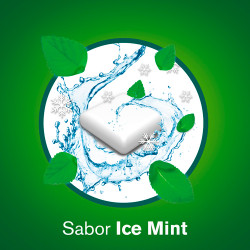 NICORETTE ICE MINT (2 MG 105 CHICLES)